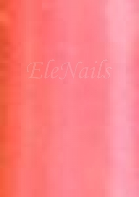 Nailart Folie 21